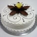 MUD CAKE WITH PLASTIC ICING